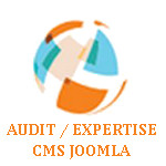 logo audit expertise